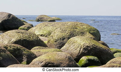Copper color erratic boulders on the shore of the Baltic...
