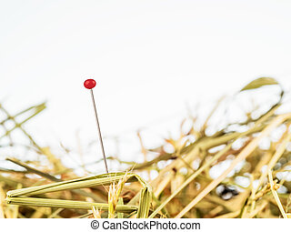 needle in a haystack saying for challenge in managemen - a...
