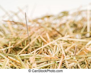 needle in a haystack. saying for challenge in managemen - a...