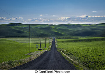 Gravel road in the wheat fields of eastern Washington state...
