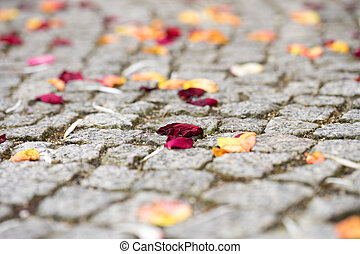Rose petals are outside the registry office