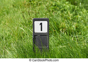 Number one sign - Pole with number 1 in grass, an indication...