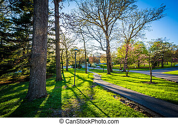 Spring color and walkway at Notre Dame of Maryland University, in Baltimore, Maryland.