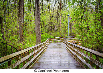 Boardwalk at Lake Roland Park, in Baltimore, Maryland.