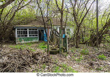 Abandoned village in Chernobyl, Ukraine in a summer day