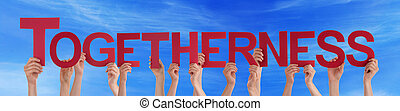 Many People Hands Holding Red Straight Word Togetherness...