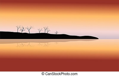 Silhouette of dry tree in islands