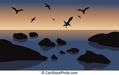 Silhouette of rock and bird in beach at the sunrise