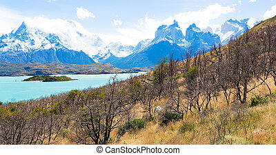 panorama of patagonia - gorgeous panorama of paine grande...