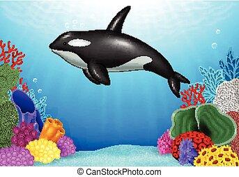 coral, asesino, ballena, caricatura