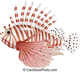 Cartoon scorpion fish isolated - Vector illustration of...