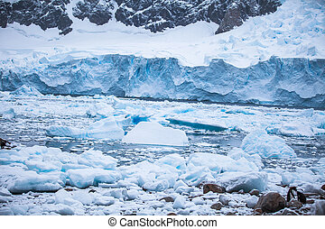 Coast Antarctica with ices and icebergs of unusual forms,...