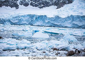 Costa, antártida, con, hielos, y, icebergs, de,...