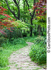 Footpath - The footpath winding its way through a tranquil...