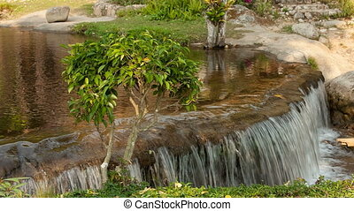 River flows thru the jungle - Japanese Garden bansai tree...