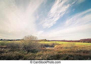 Green field landscape in autumn