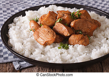 Adobo Chicken with a side dish of rice close-up. horizontal