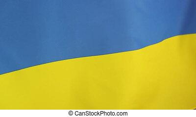 Moving national flag of Ukraine in