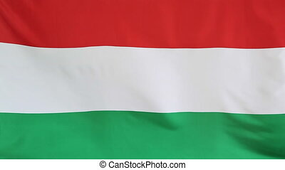 Moving fabric Hungary flag - Closeup of a fabric national...