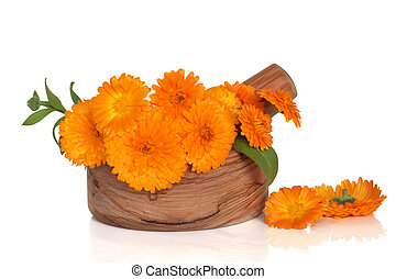 Marigold Flowers - Marigold flowers in an olive wood mortar...