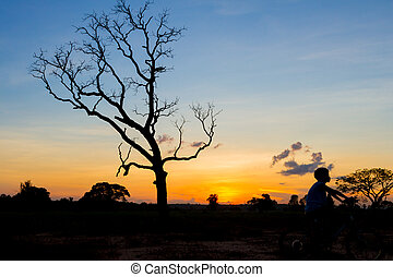 mountainbike silhouette in sunset sky background