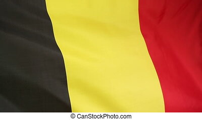 Moving national flag of Belgium - Closeup of a fabric...