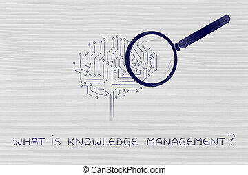 what is knowledge management: magnifying glass analyzing an...
