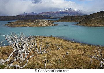 Torres del Paine National Park - Snow capped peak of Cerro...