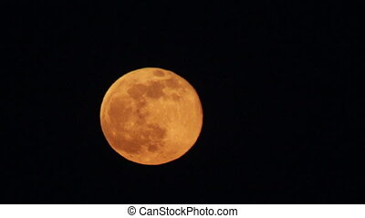 Full Red Moon Moving in the Night Sky - Full Moon in a...