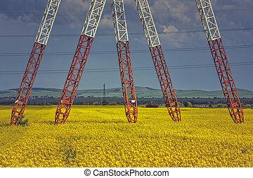 Power pole pylons in rapeseed field