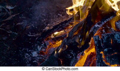 Outdoor wood campfire burring brightly with embers - Outdoor...