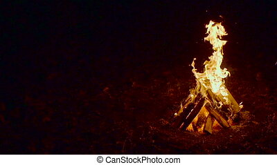 Outdoor wood campfire burring brightly at night forest with...