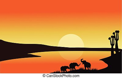 Elephant family of silhouette at the sunrise