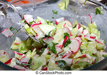 Spring vegetable salad of cucumbers and radishes
