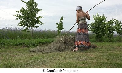 woman rake hay throughout the day and tired plunk in stook...