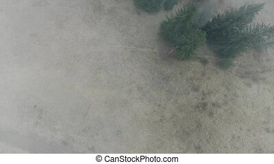 fog over land and trees in mountains top view