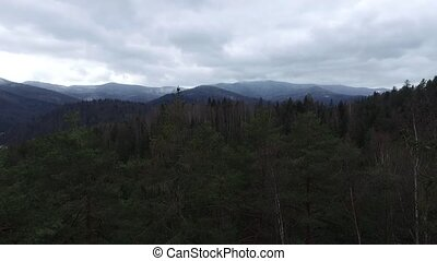 aerial view on Carpathians and woods - amazing aerial view...