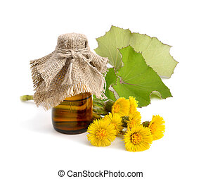 Coltsfoot flowers with pharmaceutical bottle.