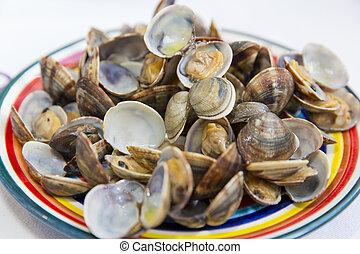 Clams steamed in white bowl ona white table