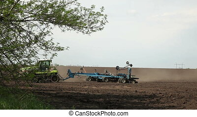 The tractor sows seeds of sunflower field