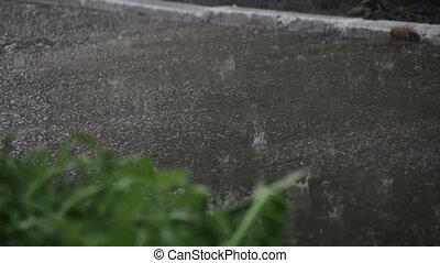 Raindrops Falling Hard on Asphalt in Park