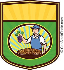 Organic Farmer Boy Grapes Raisins Crest Retro - Illustration...