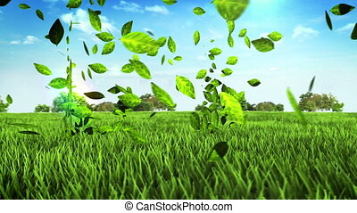 Eco House made leaves on field - Eco green House made from...