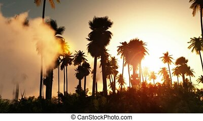 Tropical jungle background with palm tree silhouettes on...