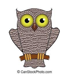 Cartoon Owl  Isolated on White Background.