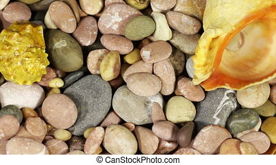 Sea Stones and Seashells Rotate