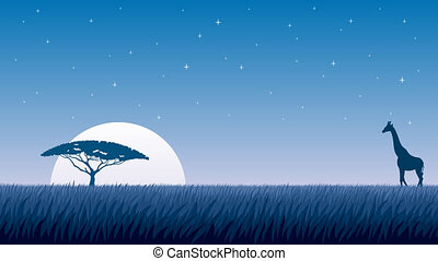African Landscape Night - Cartoon animation of African...