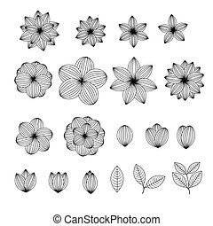 Floral lined pattern vector