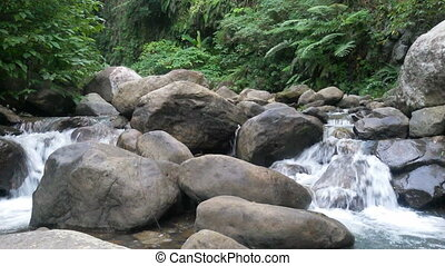 River in the jungle between the large stones