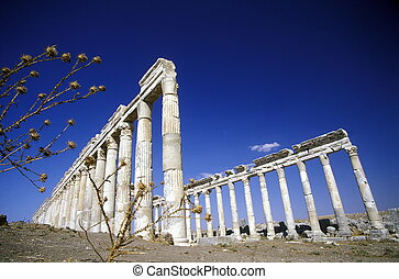 MIDDLE EAST SYRIA HAMA APAMEA RUINS - the ruins of Apamea...